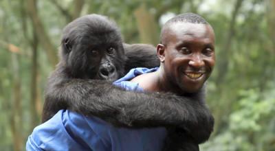 Virunga (1)