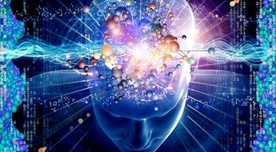 brain_mind