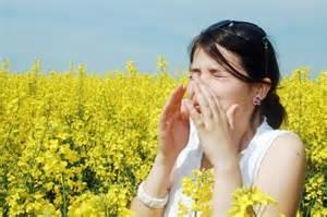 raffreddore allergico