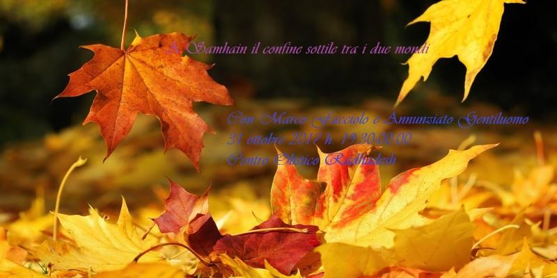 Falling-Leaves-dreamstime