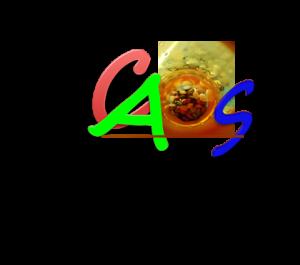 LogoCAOSAssValleSacra