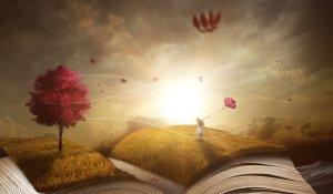 book-2929646